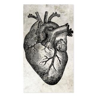 Cartes de visite vintages d'anatomie de coeur carte de visite standard