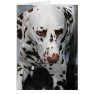 Cartes de voeux dalmatiennes mignonnes