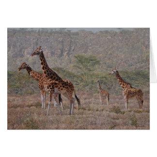 Cartes de voeux d'art de faune de Combes de type