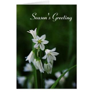 Cartes de voeux de saison des vacances - carte