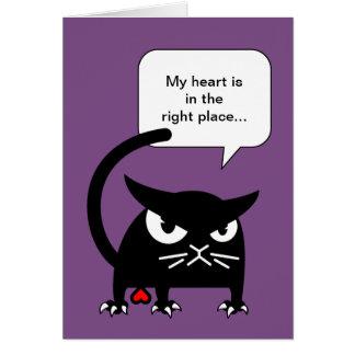 Cartes de voeux drôles de chat   Badd Gato