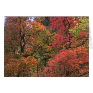 Cartes de voeux mystiques de l'automne (3)