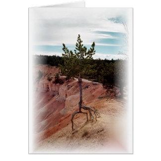 Cartes Debout seulement au canyon de Bryce