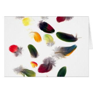 Cartes Dérive de plumes