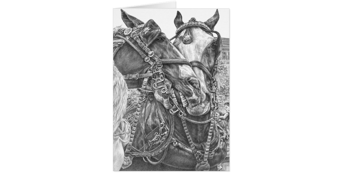 Cartes dessin de cheval de trait de clydesdale par le - Dessin cheval de trait ...