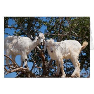 Cartes Deux chèvres dans un arbre