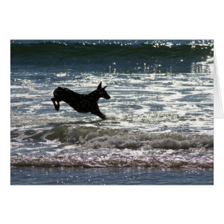 Cartes Dobermann - noir - saut d'océan