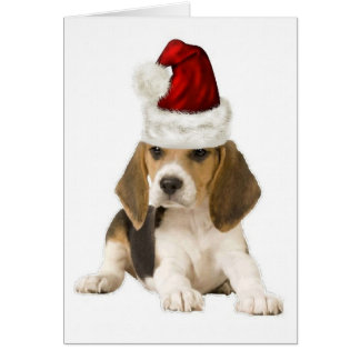 Cartes Dogs~Original Ditzy Notecard~Beagle~Christmas