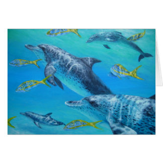 Cartes dolphinswithsnappers