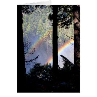 Cartes Double arc-en-ciel par des arbres