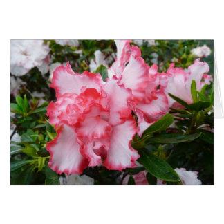 Cartes Double ressort rouge et blanc d'azalées floral