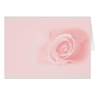 Cartes Doucement rose de rose