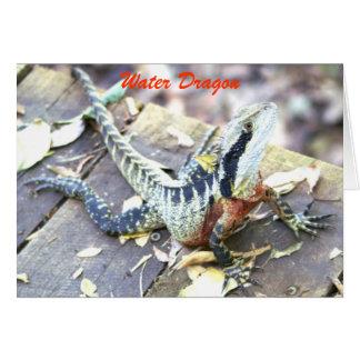 Cartes Dragon d'eau