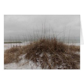 Cartes Dunes d'hiver