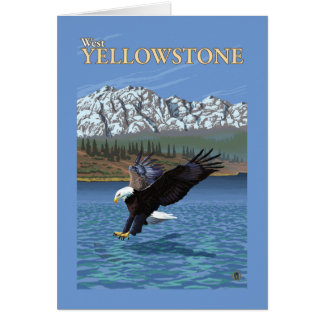 Cartes Eagle chauve plongeant - Yellowstone occidental,