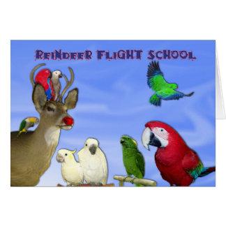 Cartes École de vol de renne