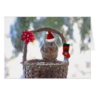 Cartes Écureuil de Noël dans le panier de Milou