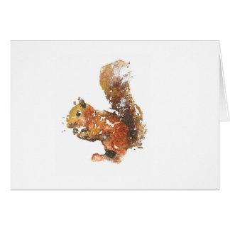 Cartes Écureuil rouge
