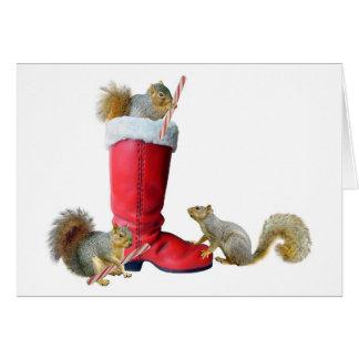 Cartes Écureuils dans la botte de Père Noël