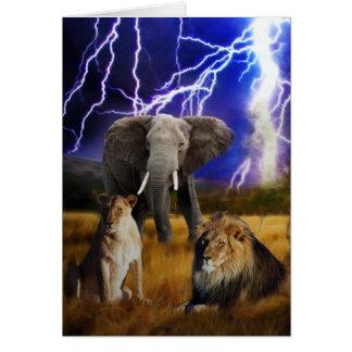 Cartes Éléphant Afrique du Sud de lions
