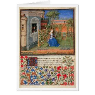 Cartes Emilia dans le rosegarden