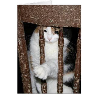 Cartes Emprisonné