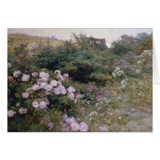 Cartes En pleine floraison