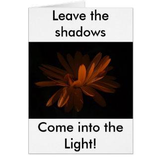Cartes Entrez dans la lumière !