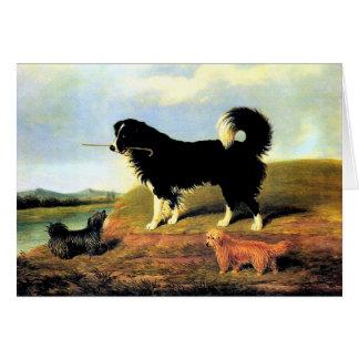 Cartes Épagneul et deux terriers de Norfolk