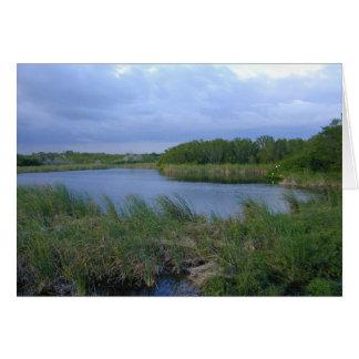 Cartes Étang d'Eco, la Floride Everglades, 1999