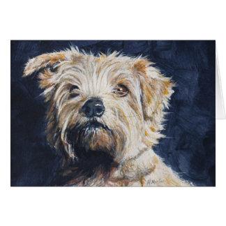 Cartes Étude de tête de Norfolk Terrier
