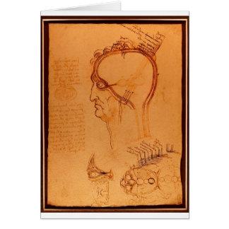 Cartes Étude du crâne