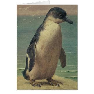 Cartes Étude d'un pingouin
