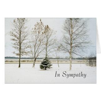 Cartes evergreen1card neigeux, dans la sympathie