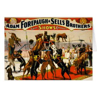 Cartes Exposition de cirque de great dane