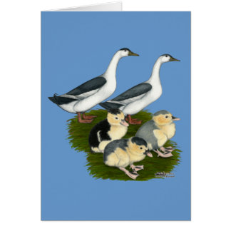 Cartes Famille bleue de canard de pie