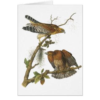 Cartes faucon Rouge-épaulé, John Audubon