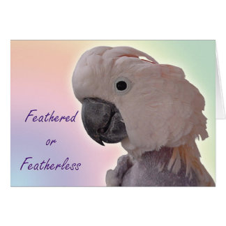 Cartes Featherless