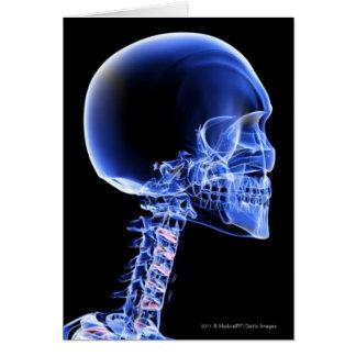 Cartes Fermez-vous vers le haut du rayon X des os dans le