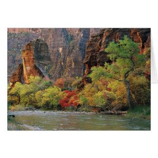 Cartes Feuillage d'automne le long de rivière de Vierge