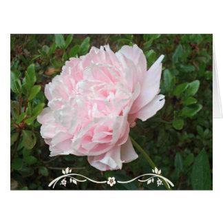 Cartes Feuille assez rose de vert de fleur de pivoine