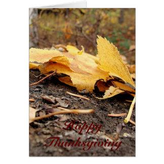 Cartes Feuille de chute sur le tronçon d'arbre