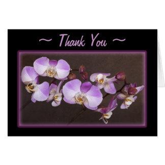 Cartes Fin violette et blanche d'orchidée vers le haut de