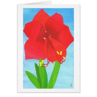 Cartes Fleur d'amaryllis