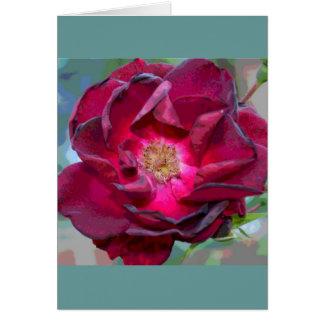 Cartes Fleur de Bourgogne de passion