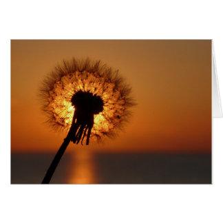 Cartes Fleur d'haleine/Dandelion