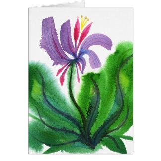 Cartes Fleur, mini 002