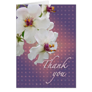 Cartes Fleur sauvage de Mullein de mite de Merci