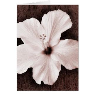 Cartes Fleur tropicale de sépia hawaïenne blanche de