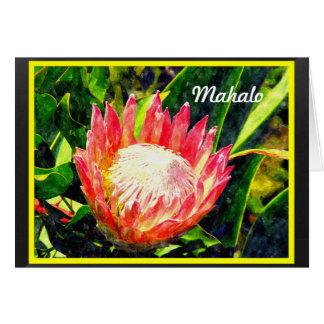 Cartes Fleur tropicale du Roi Protea de Maui Hawaï,